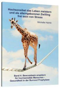stress lösung